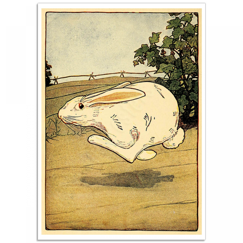 Peter Rabbit Running To The Gate