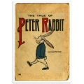 Book Illustration Poster - Peter Rabbit Book Cover