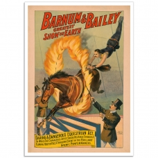 Circus Poster - Barnum & Bailey, Daring and Dangerous Equestrian Act