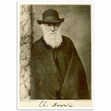 People Poster - A portrait of Charles Darwin, 1881