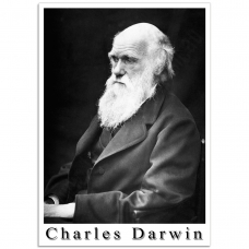 People Poster - Photograph of Charles Darwin 1869