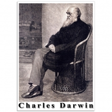 People Poster - Engraving of Charles Darwin
