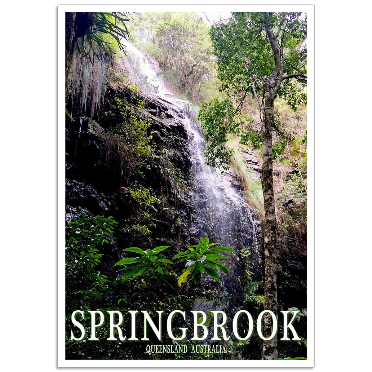 Australian Photographic Poster - Twin Falls - Springbrook, Queensland
