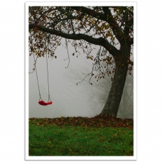 Photographic Poster - Swing in the Fog