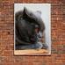 Pet Photographic Poster - British Shorthair Cat
