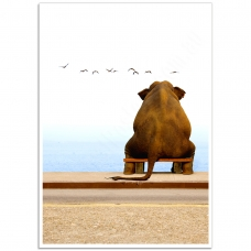 Wildlife Photographic Poster - Elephant Thinking