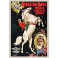 Circus Poster - Ringling Brothers, Madam Ada and Jupiter
